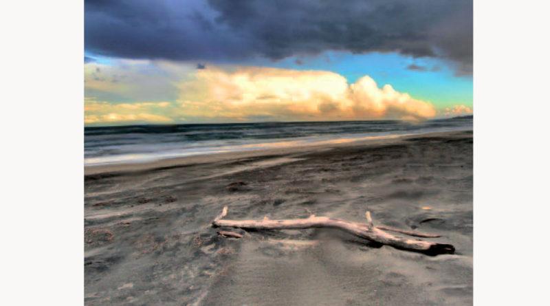 Sulla sabbia il profumo d'inverno di Anna Leo. Dialoghi e riflessioni sul nostro tempo
