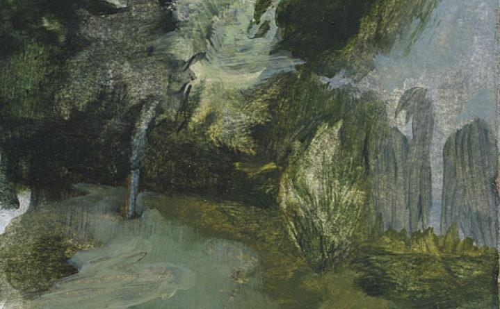 Selvatico contro Covid-19