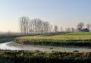 Pianura Padana. Verso il Delta del Po. Attraverso i pensieri.