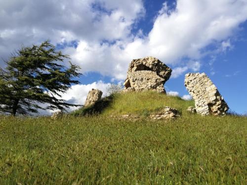 Ruderi dell'antico castello di Aidone, Enna,  foto di Dario Bottaro