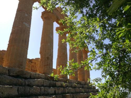 Valle dei templi di Agrigento nel periodo del mandorlo in fiore, foto di Giacomo Vespo
