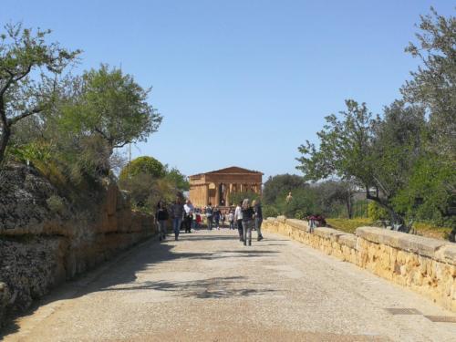 Via Sacra nella Valle dei Templi di Agrigento,  foto di Dario Bottaro